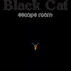 The Black Cat Escape Room