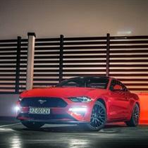 Poczuj moc Forda Mustanga