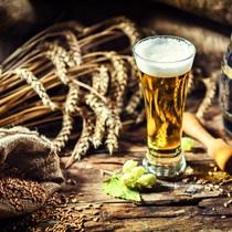 Kurs Kiperski II stopnia z warzeniem piwa