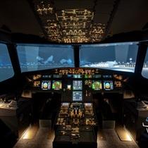 Zasiądź za sterami Airbusa A320