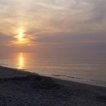 Pobyt w Villi Amber nad Bałtykiem